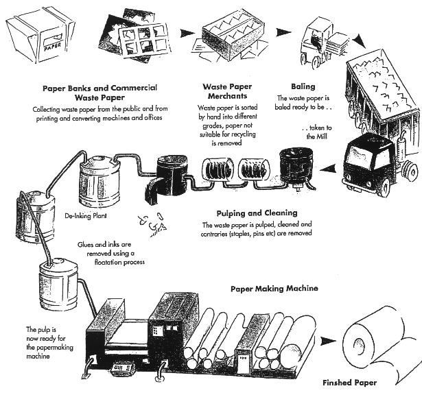 producing paper today click here to see a diagram of the following process